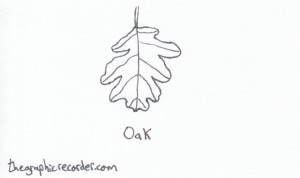 The Graphic Recorder - Visual Vocabulary - Tree Leaves of Oregon - Oak