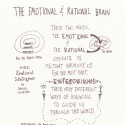 Sketchnoting the Emotional and Rational Brain