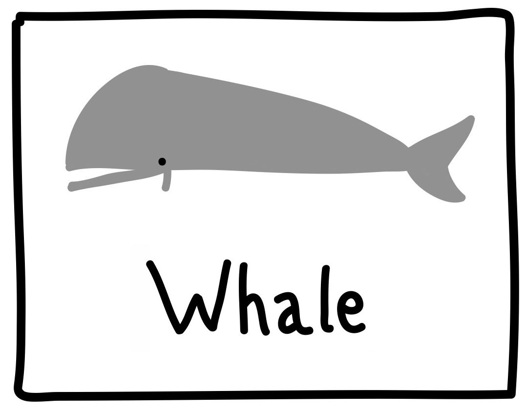 plementary medicine additionally Halloween Color By Letters Activity Coloring Pages For Kids moreover Graphic Whale also Prescription medicine further Germs. on back remedies