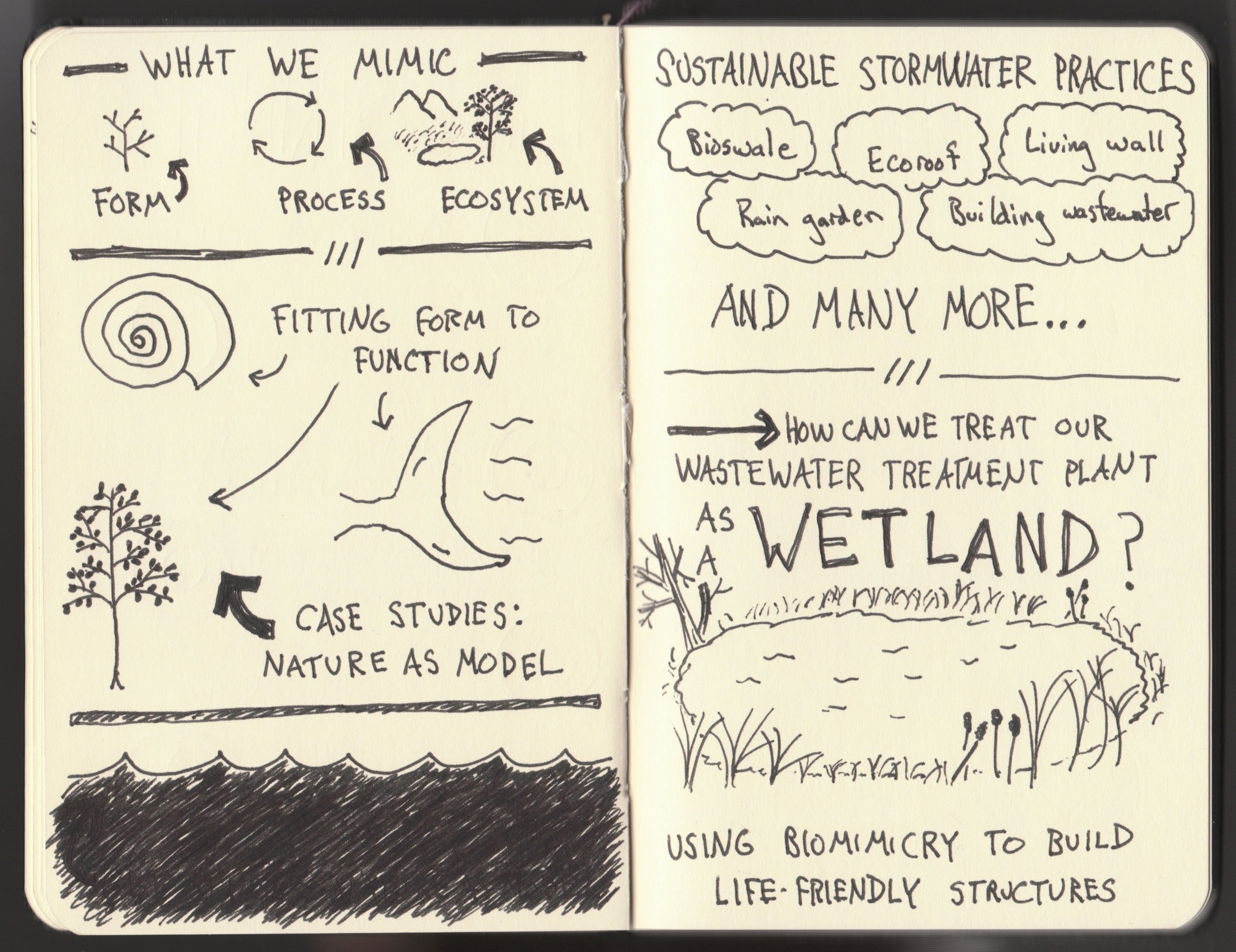 Biomimicry Oregon Genius of Place Stormwater Workshop (3) - The Graphic Recorder - Doug Neill Sketchnotes