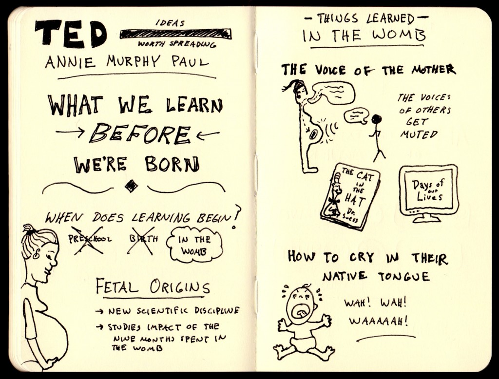 Annie Murphy Paul What We Learn Before We're Born Sketchnotes (1) - Doug Neill