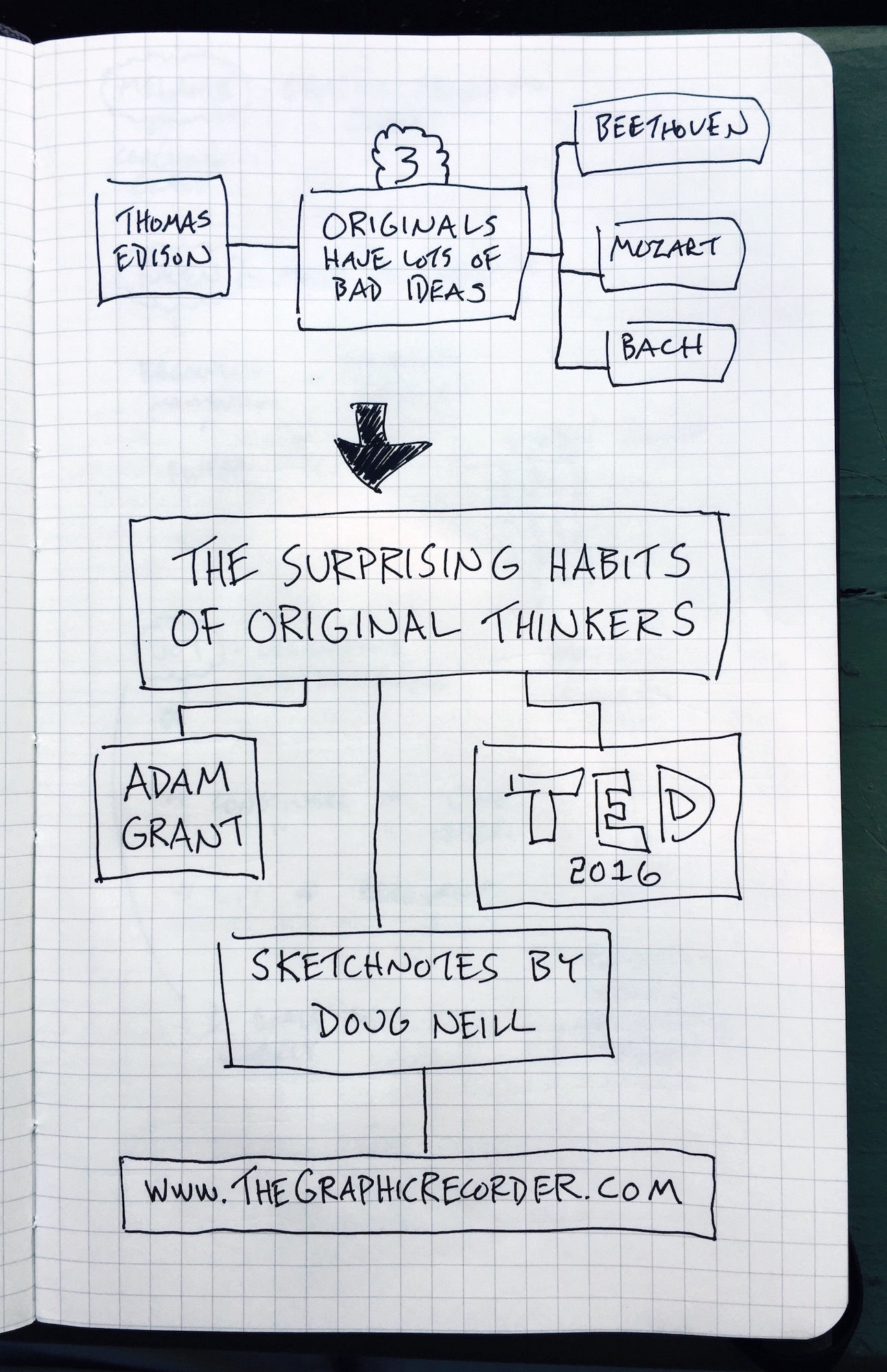 The Surprising Habits of Original Thinkers (2) - Adam Grant TED Talk - Doug Neill Sketchnotes